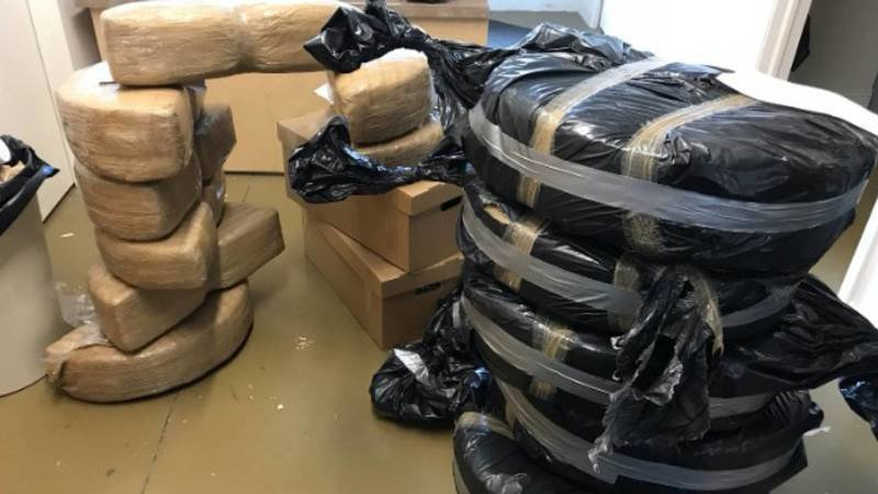Does Ford have a Side Hustle? $1 Million in Pot Found Inside New Ford Fusions