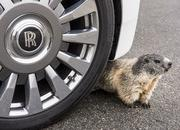 Breaking News: Groundhogs Love Rolls-Royce - image 740305