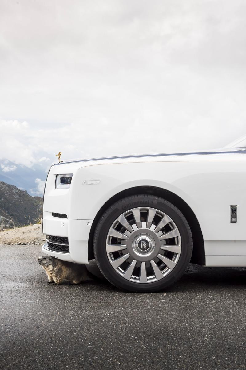 Breaking News: Groundhogs Love Rolls-Royce