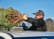 Chevy Offers Helpful Hints for Transporting Your Christmas Tree - image 748834