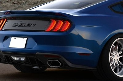 2018 Ford Shelby Mustang 1000 - image 742933