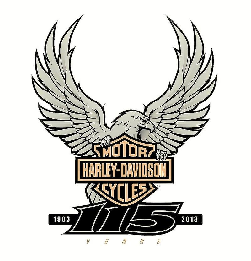 Harley-Davidson models get limited edition 115-year celebratory color options