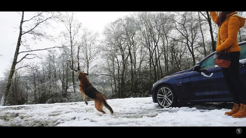 Video of the Day: The Scotland Colors, Courtesy of BMW