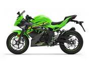 Kawasaki is out with its new 125cc Ninja and Z babies - image 795514