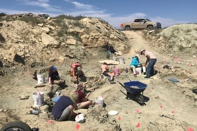 Toyota Assists In Dino Bone Dig