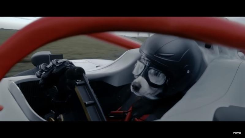 "Watch a Dog Drive an F1 Car in The Chemical Brothers ""We've Got to Try"" Music Video"