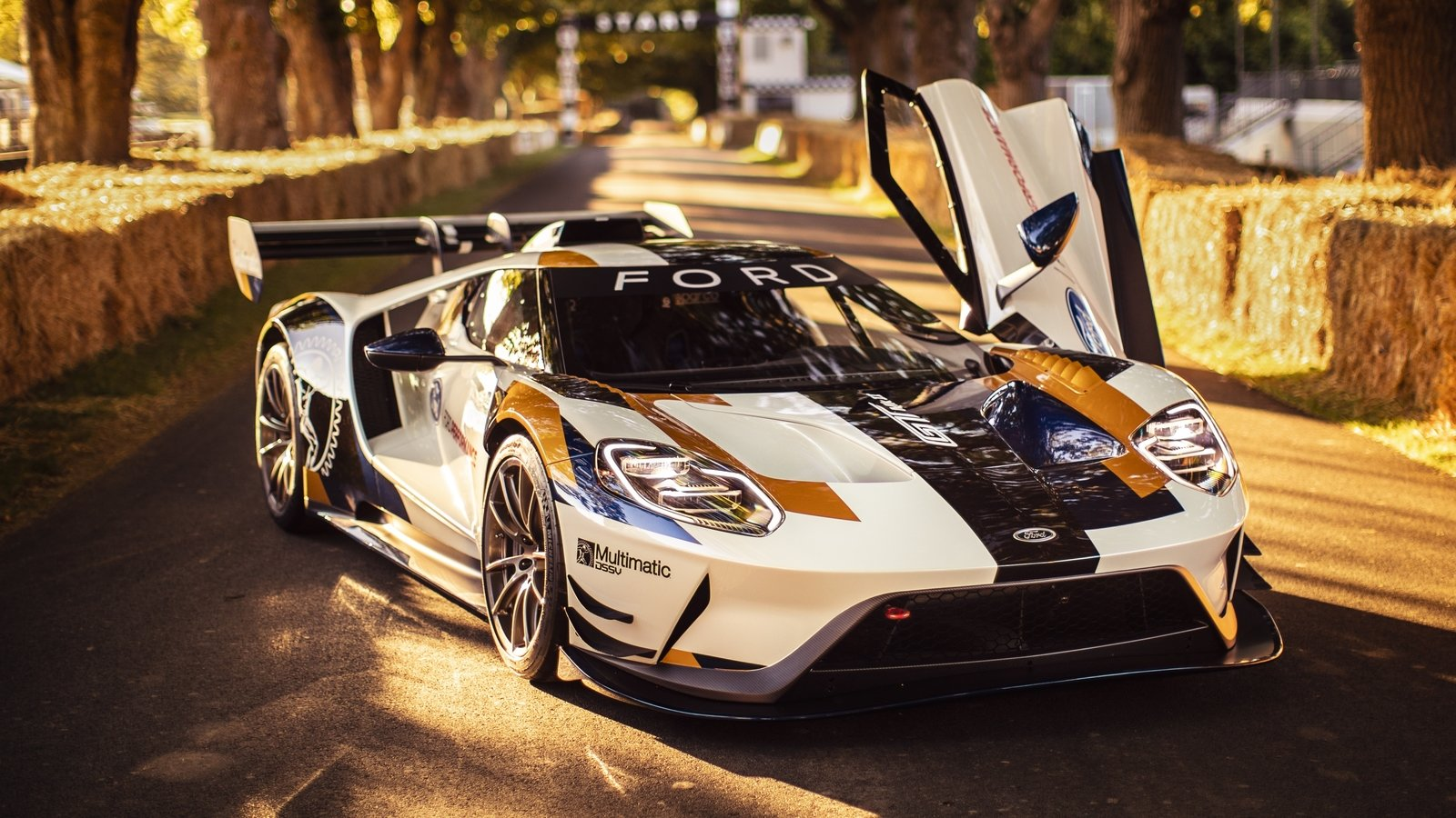 2020 Ford Gt Mk Ii Quirks And Facts Pictures  Photos