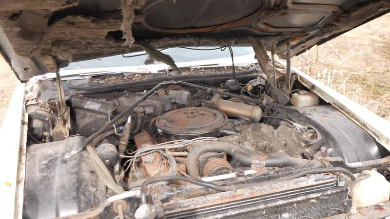 Will This Abandoned 1970 Cadillac Deville Actually Start and Drive Home? - image 908834