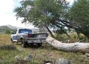 Old-School Showdown: 1991 Ford F-150 vs. 1995 Dodge Ram Tug-of-War - image 928970