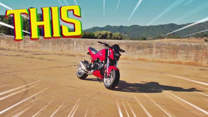 A Modified Honda Grom Takes On An Old-school Tuned Ford Bronco - image 1019005