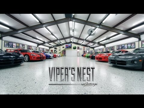 Video: This Is How You Collect Vipers