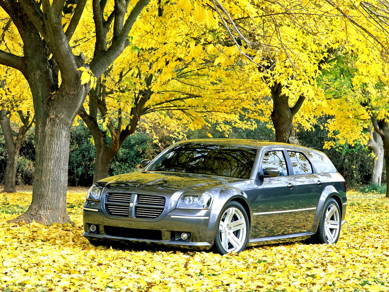 2006 Dodge Magnum Srt 8 Top Speed