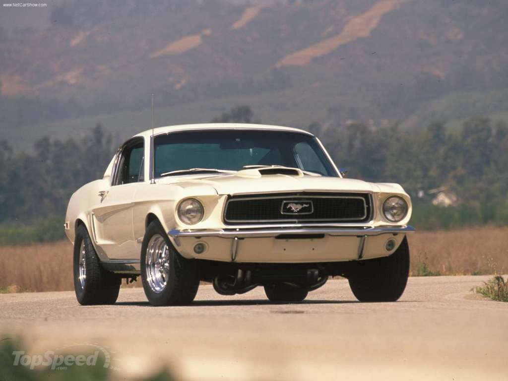 The Top Muscle Cars Of The 60s And 70s Picture 405365