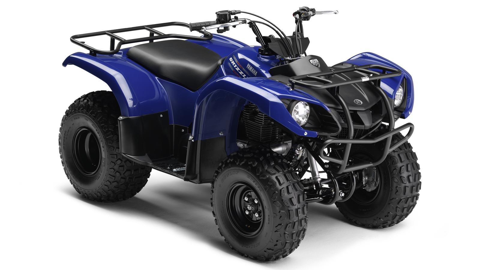 2013 Yamaha Grizzly 125 | Top Speed