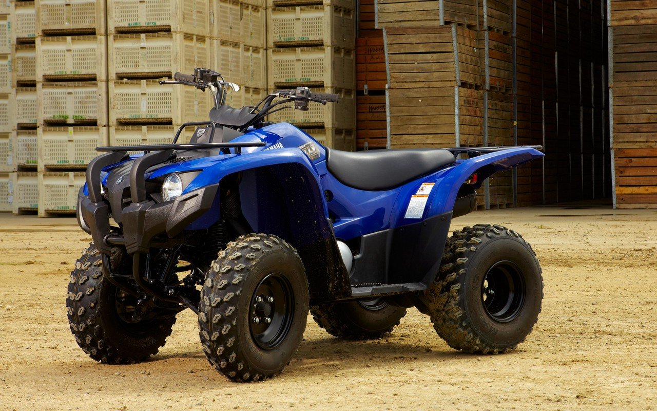 2013 yamaha grizzly 300 automatic review top speed
