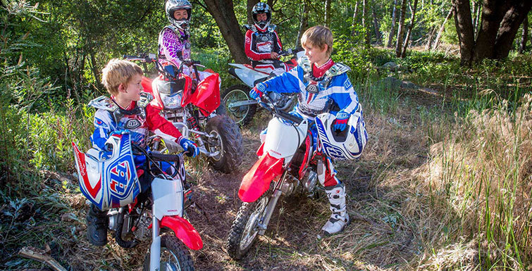 2014 honda crf110f picture 517642 motorcycle review for Honda crf110f top speed