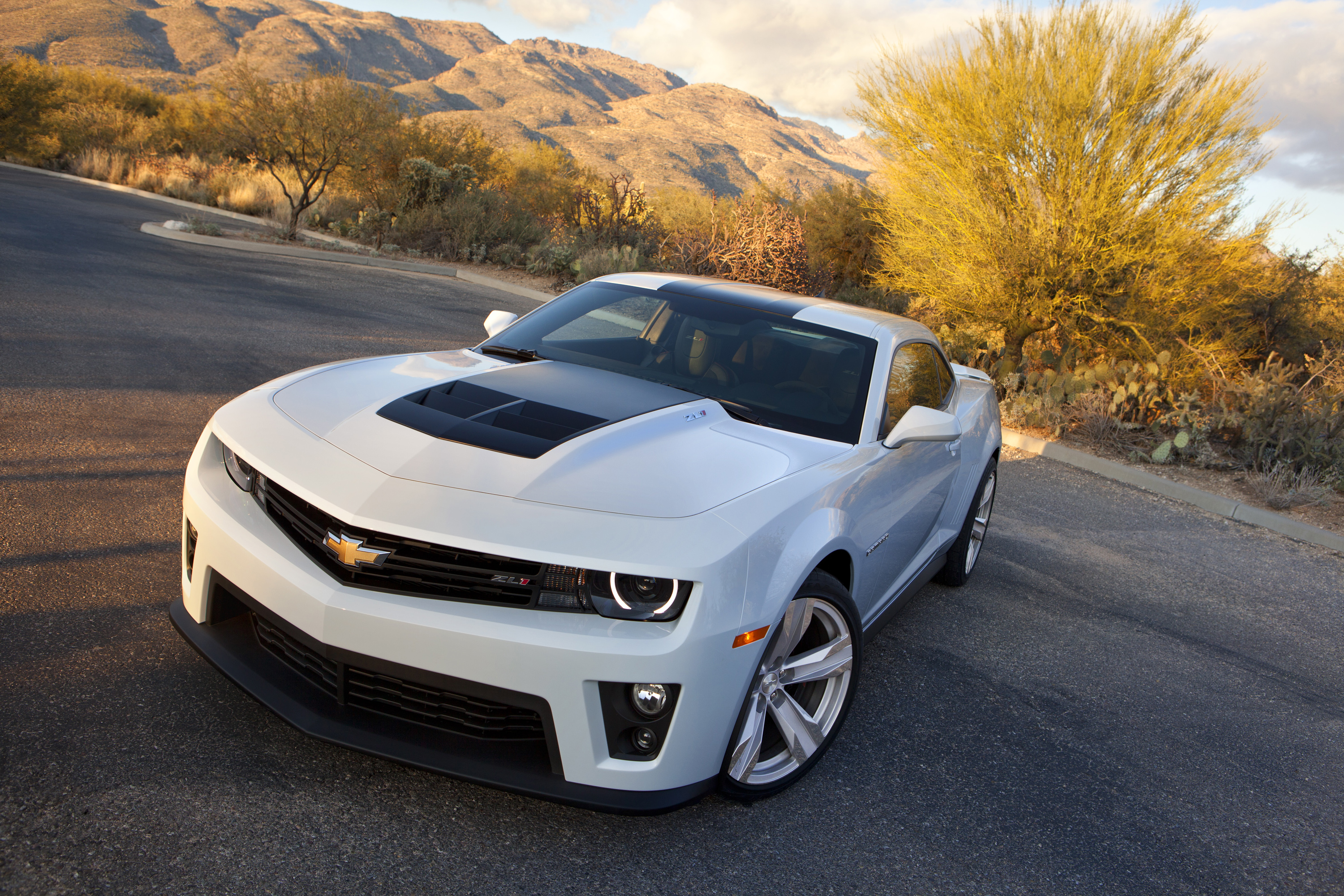 Chevrolet Camaro ZL1 Facing Supercharger Problems | Top Speed