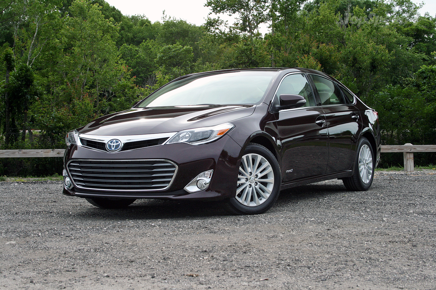 2015 toyota avalon hybrid driven picture 632294 car review top speed. Black Bedroom Furniture Sets. Home Design Ideas