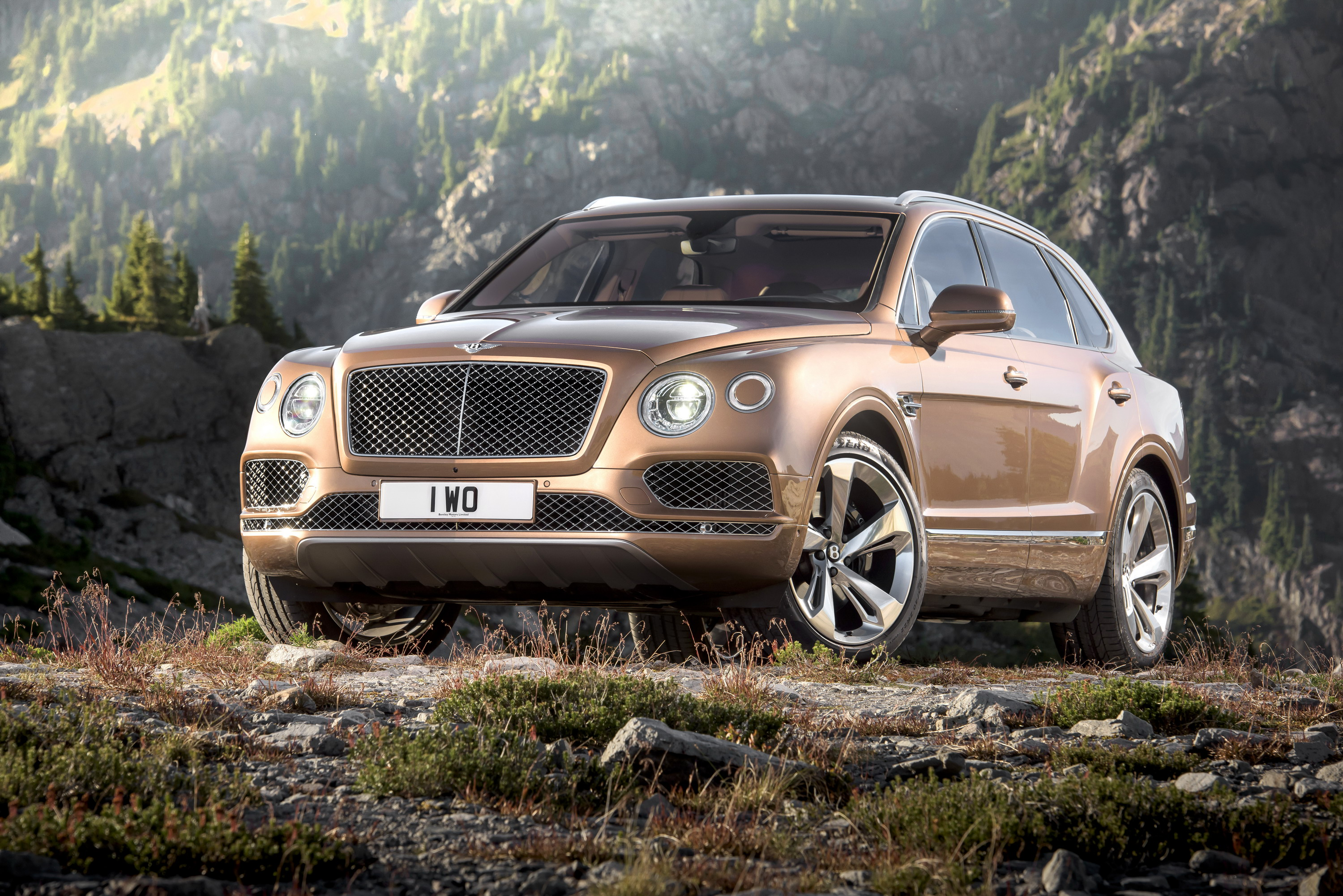 continental price informations supersports suv photos bentley articles makes