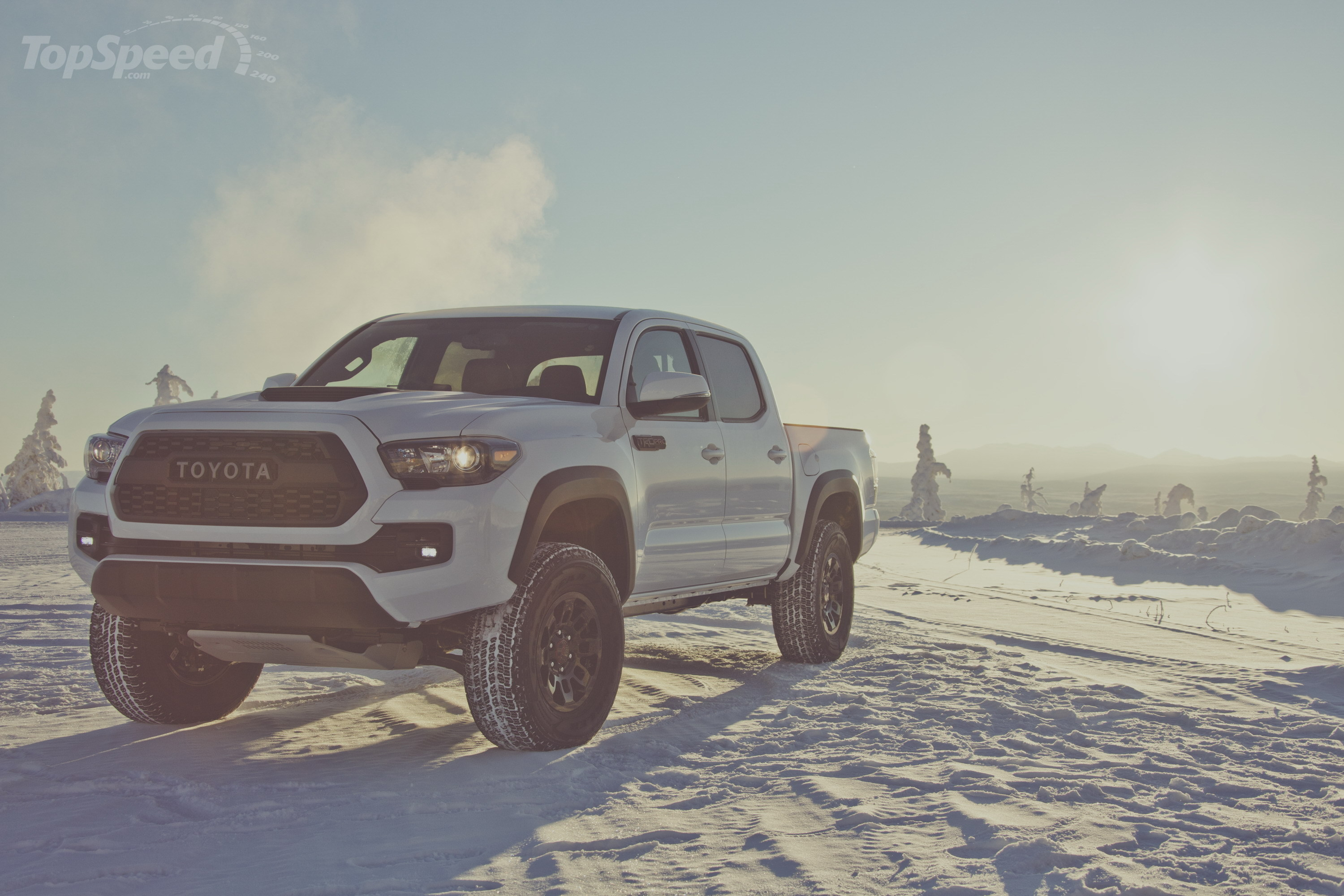 2017 toyota tacoma trd pro picture 665226 truck review top speed. Black Bedroom Furniture Sets. Home Design Ideas