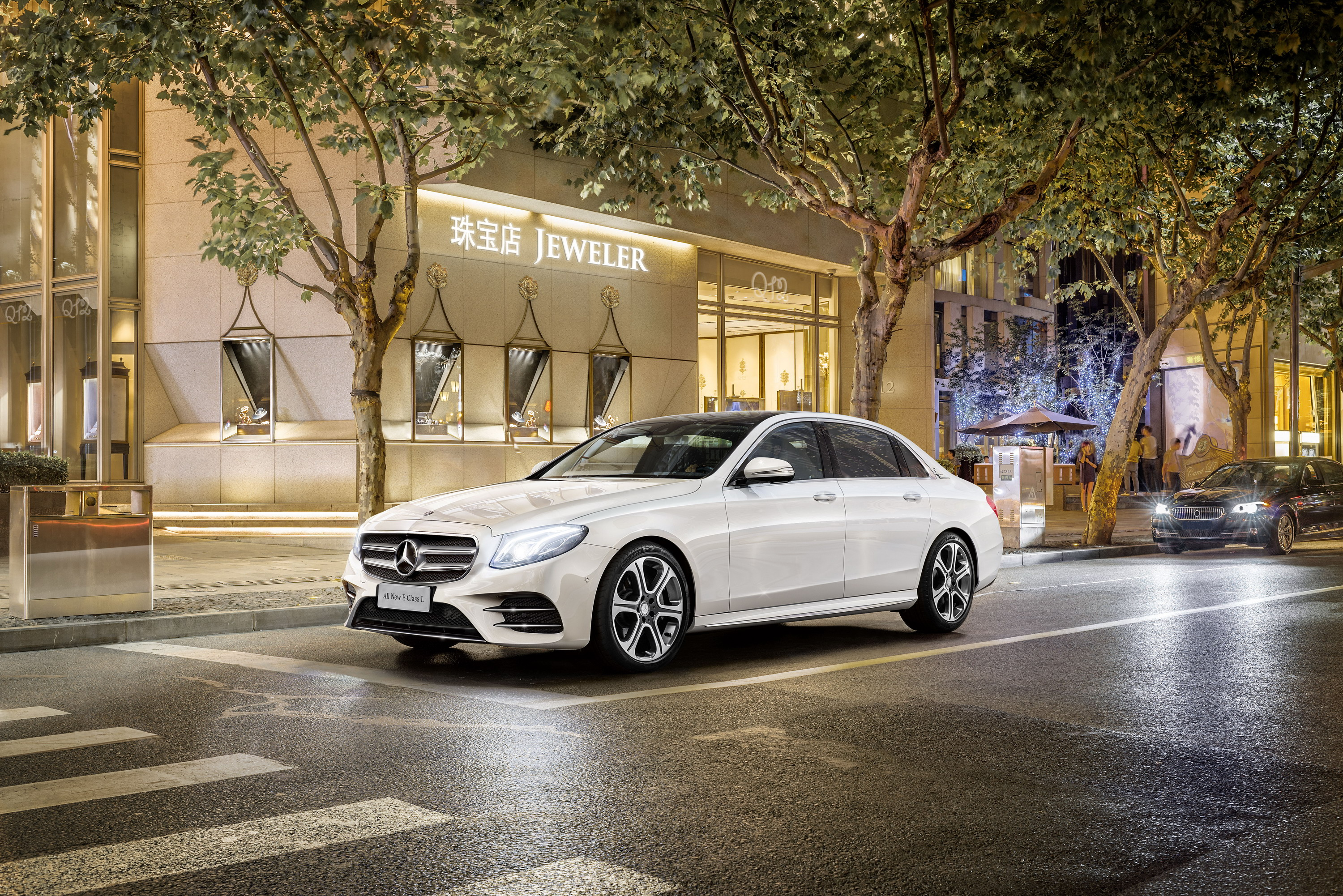2017 Mercedes-Benz E-Class L Review - Top Speed