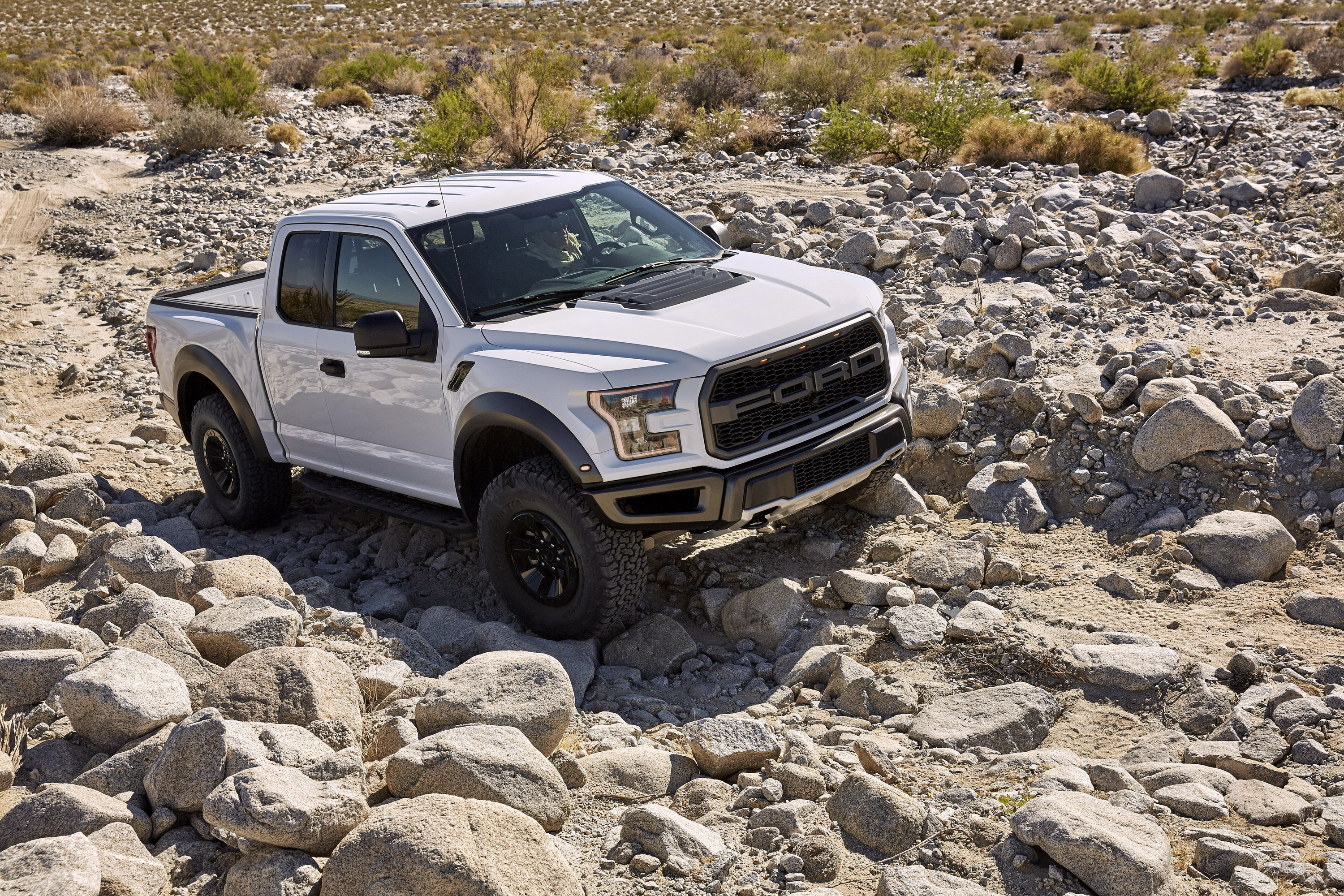 2017 Ford F-150 Raptor Gallery 678404 | Top Speed
