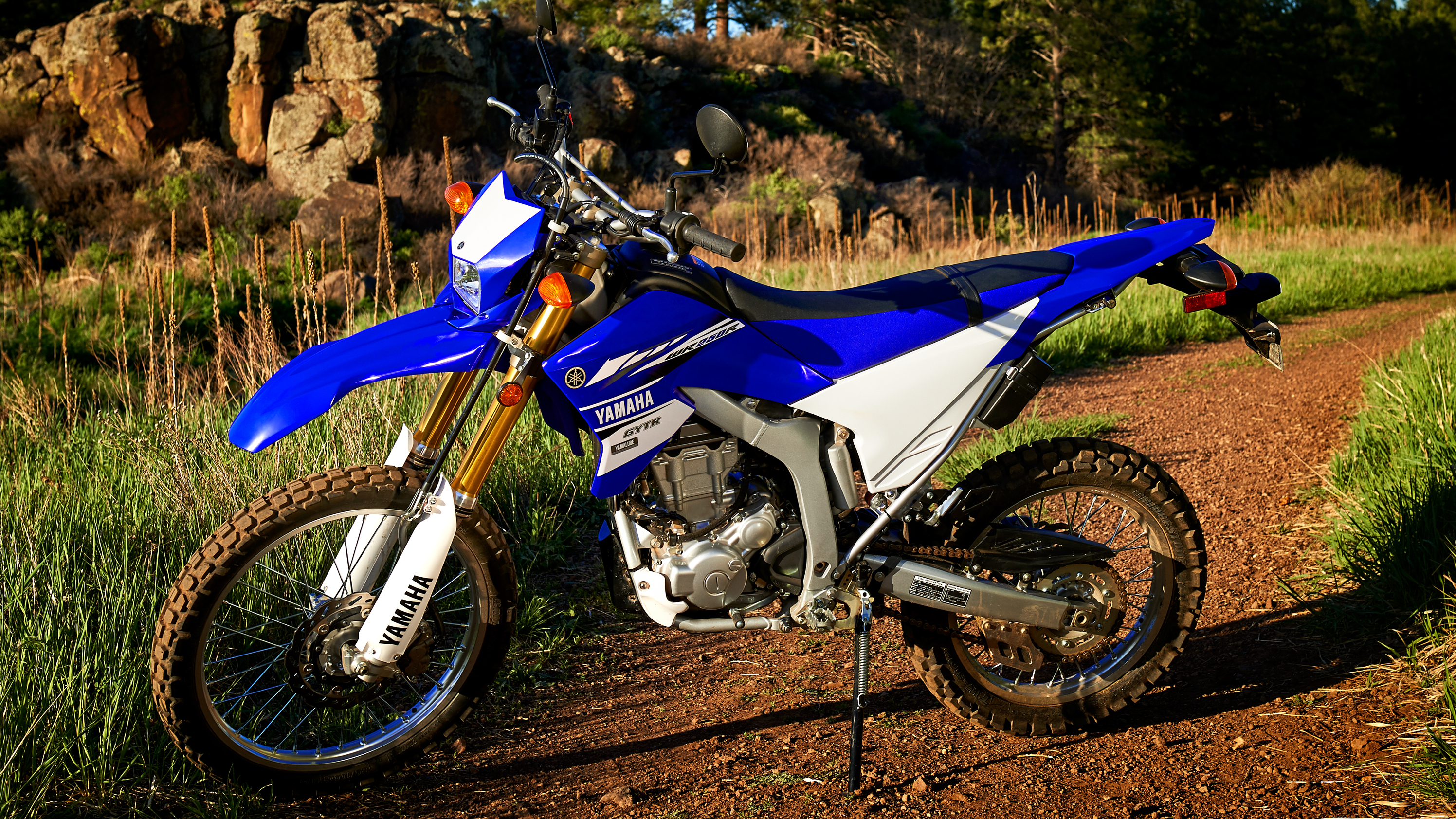 Yamaha Wr250r Fuse Box | Repair Manual