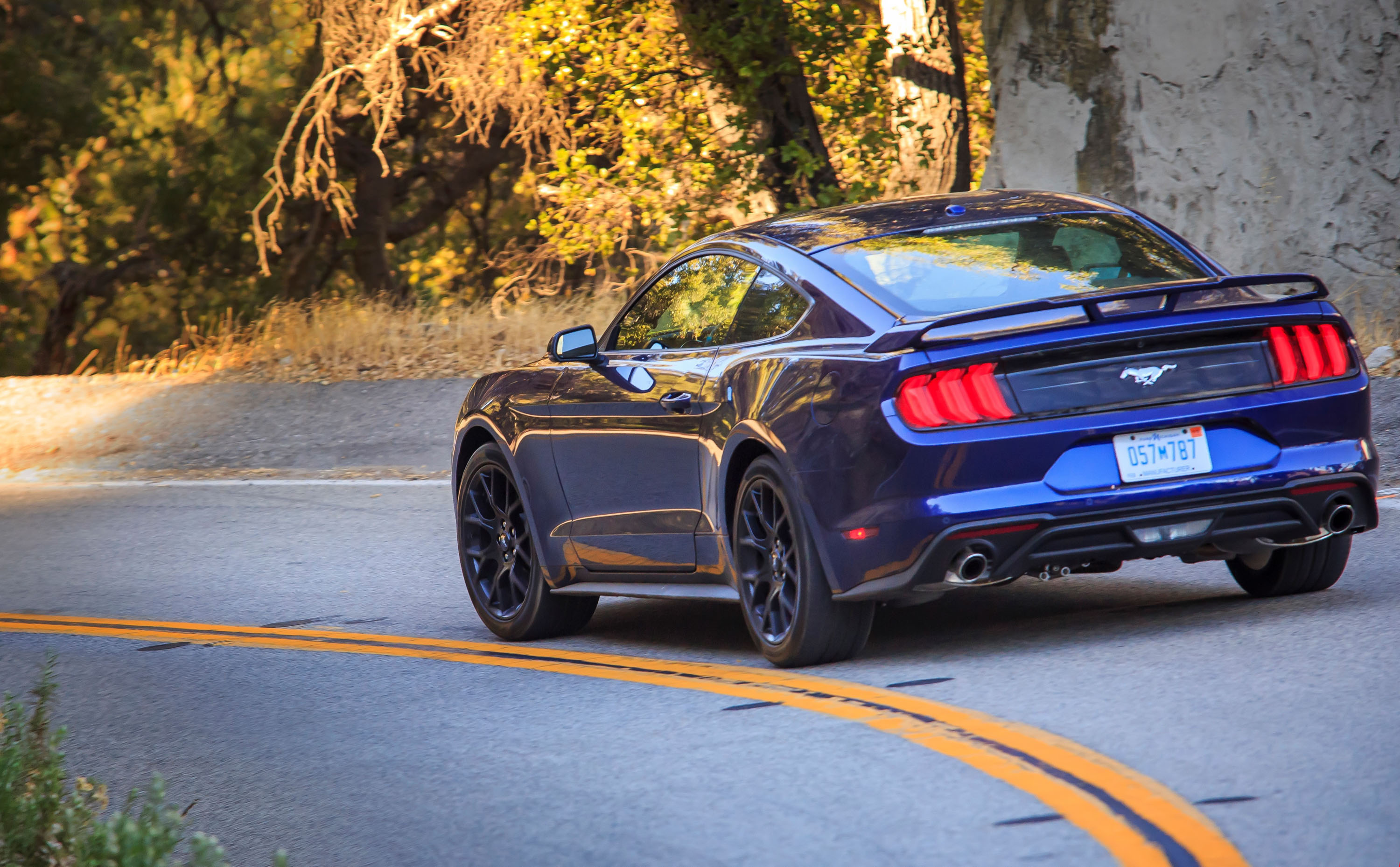 Ford Study Driving A Sports Car Is Better Than Kissing News Top - Sport car driving