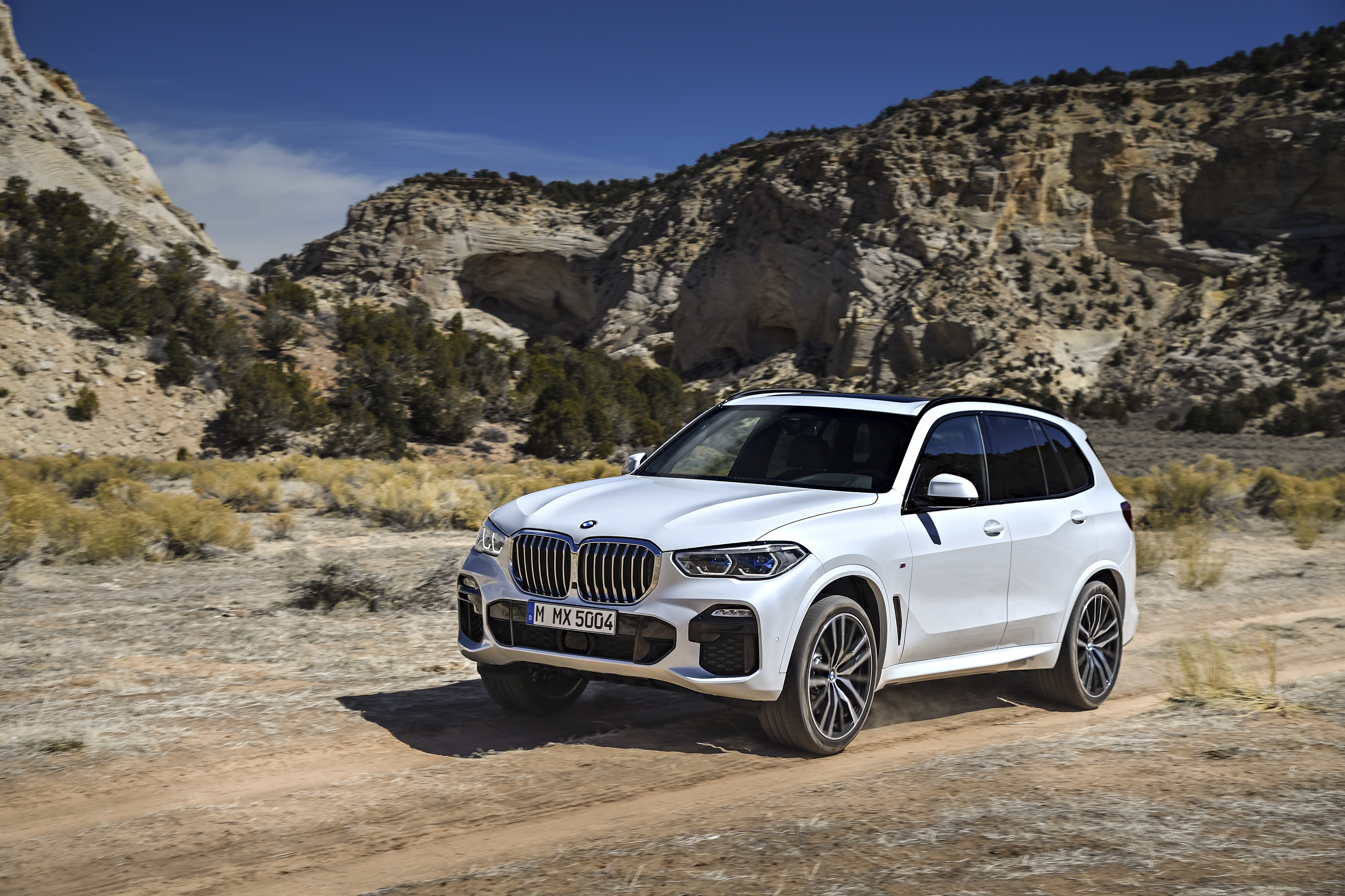 Bmw X5 Cargo Space >> The 2019 Bmw X5 Grew In Almost Every Way But Doesn T Deliver Where