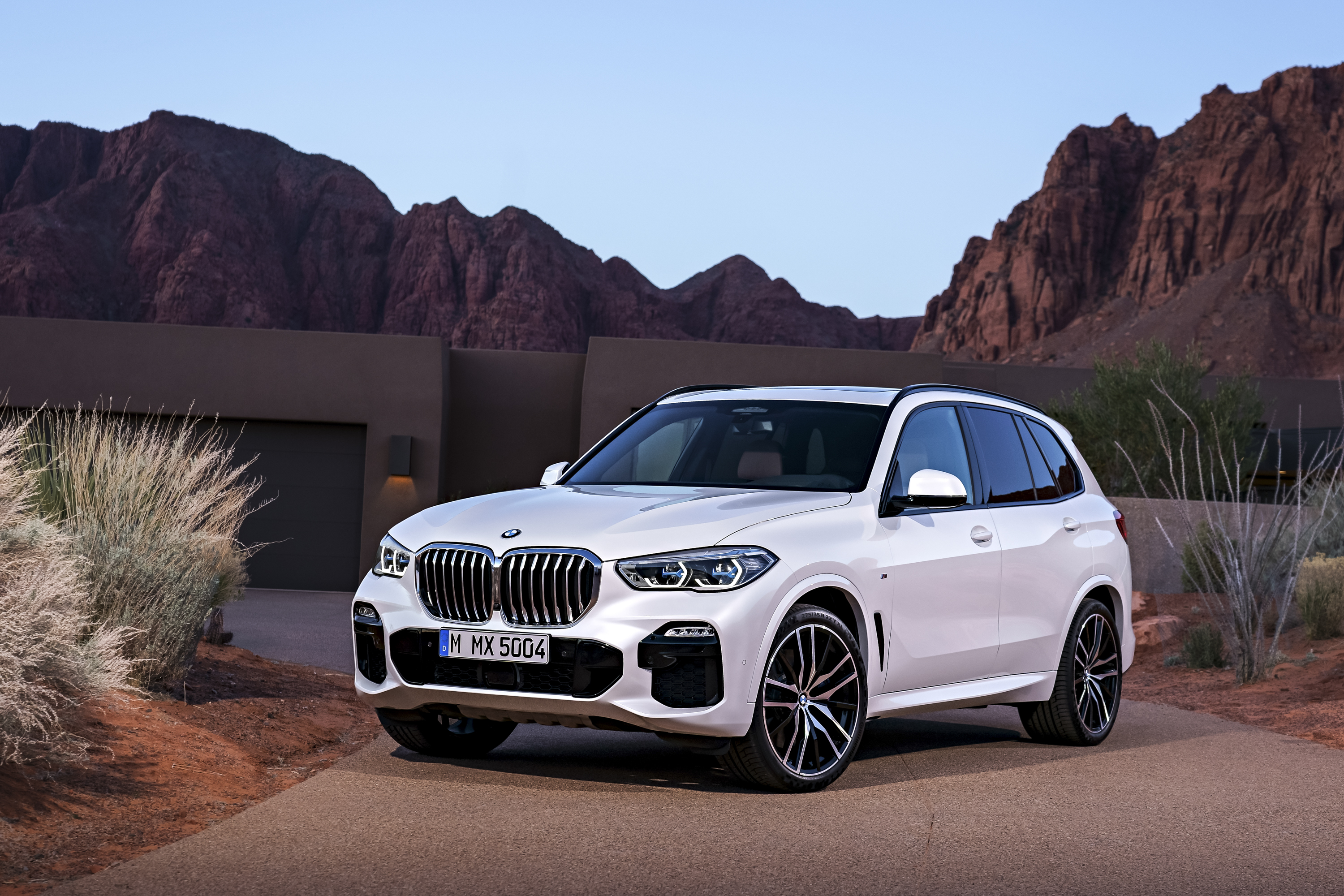 2019 Bmw X5 Unveiled Top Speed