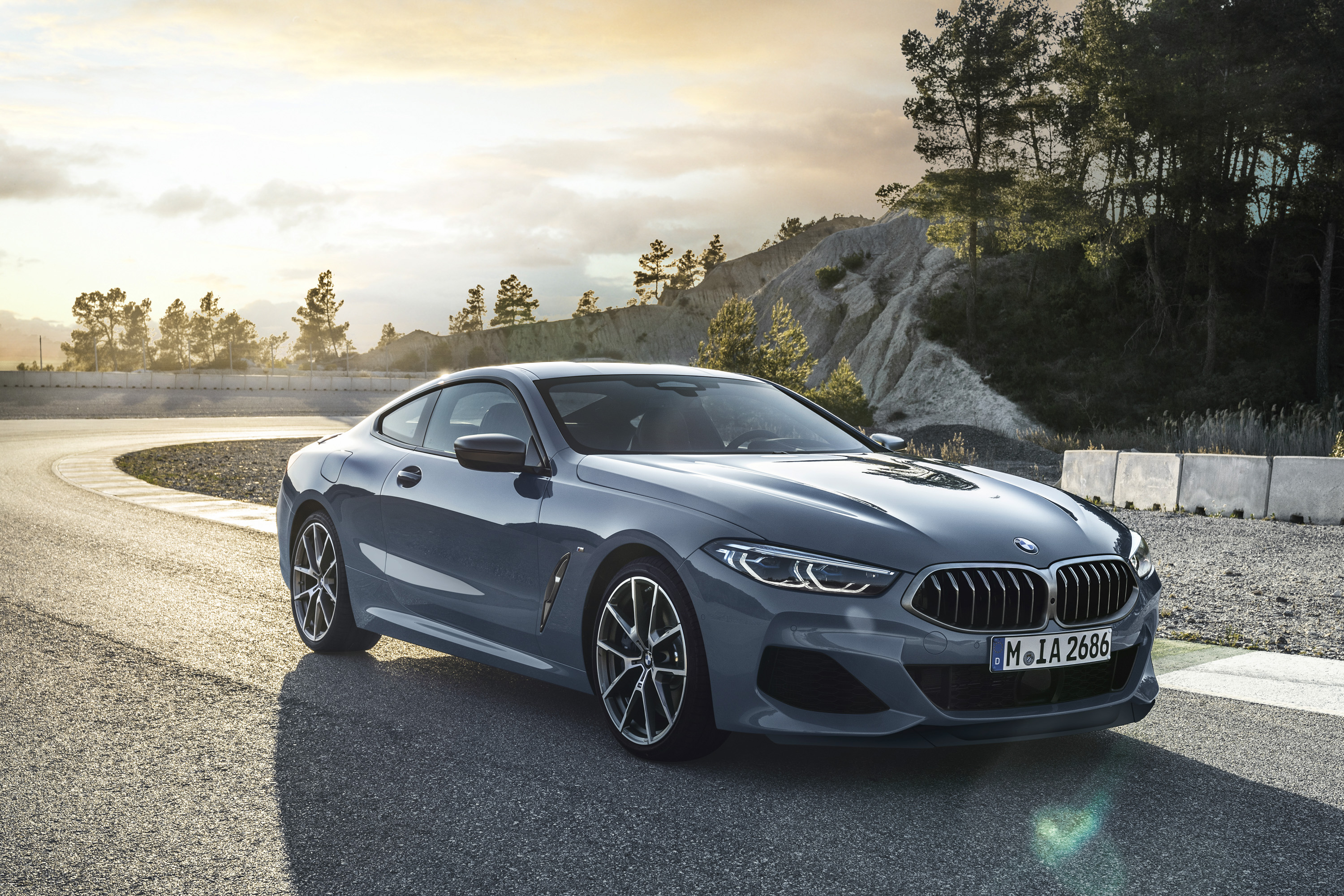 Love It Or Leave It - The 2019 BMW 8 Series | Top Speed