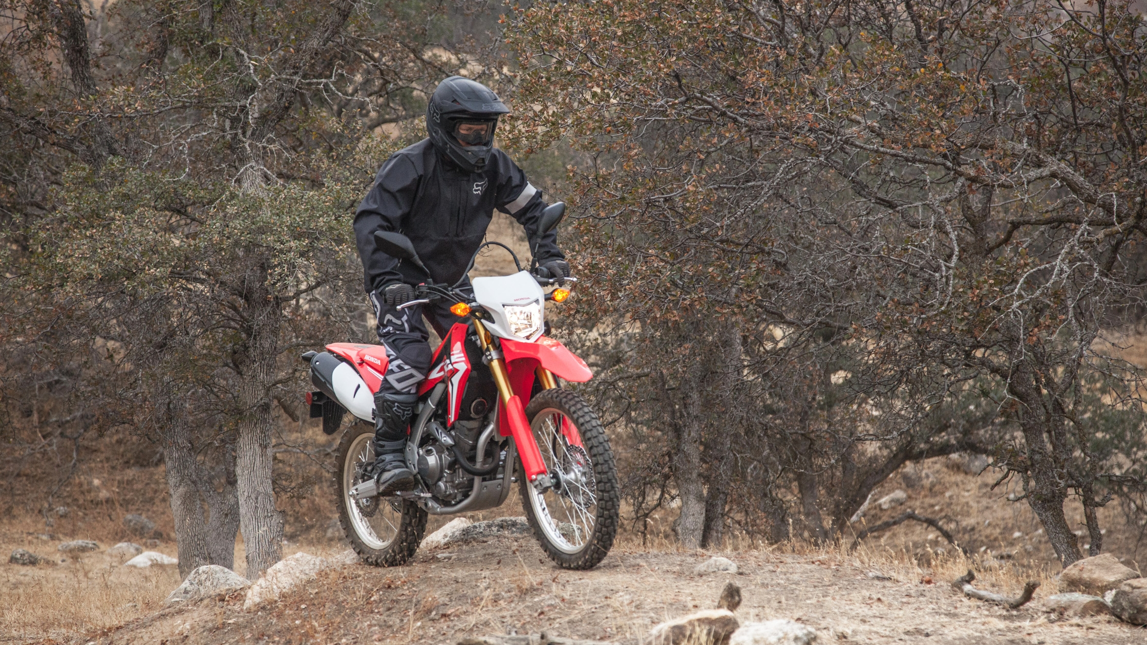 2017 Honda CRF250L / CRF250L Rally Pictures, Photos