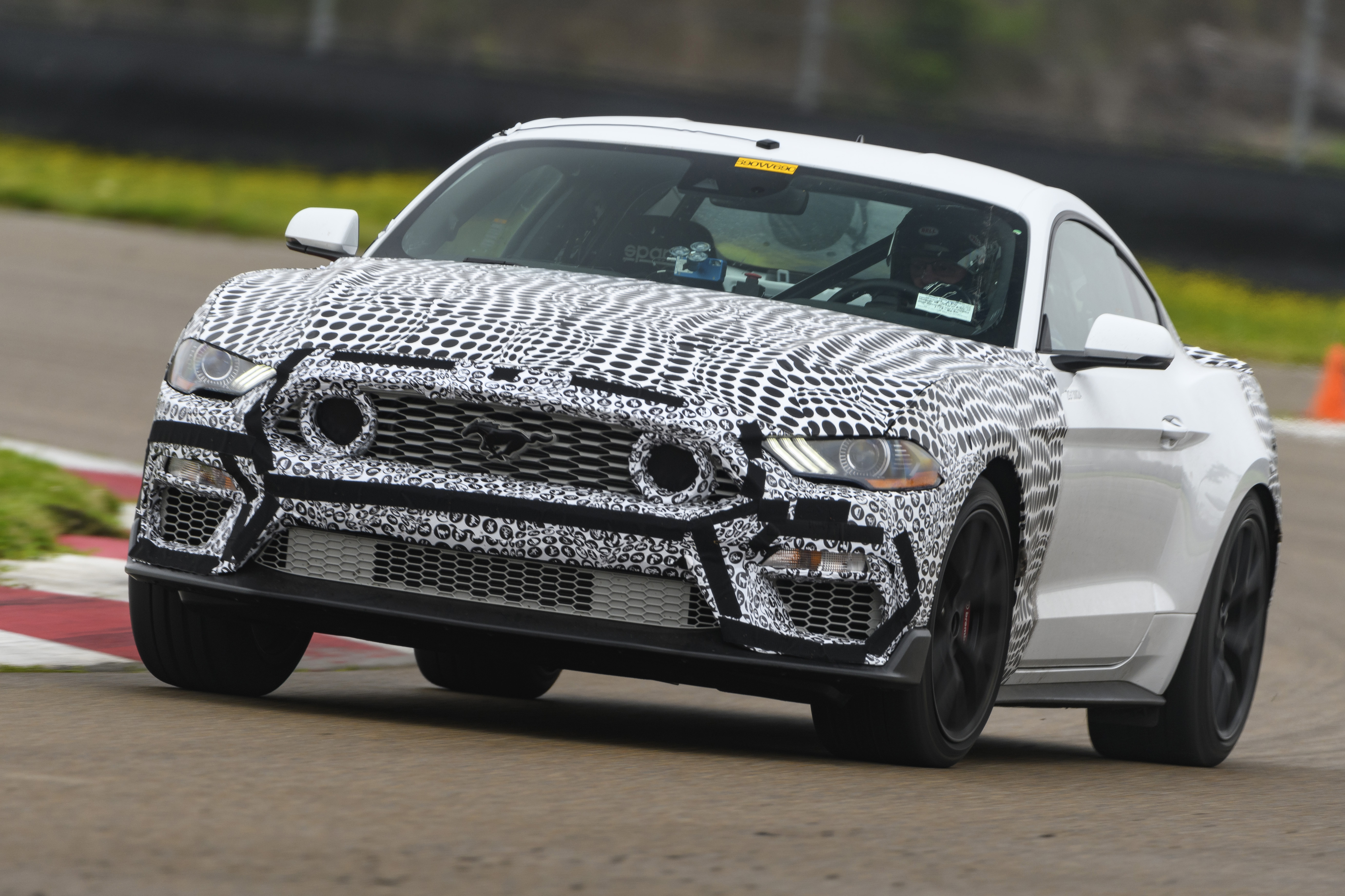 Picture 2021 Ford GT350
